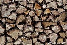 February 2013: 2nd Fair of forest biomass in Catalonia
